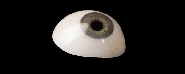 Prothèses oculaires